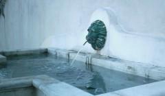 019 fontaine dim (703 x 412).jpg
