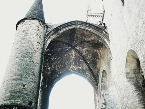 histoire,cathédrale,édifice,lieu de culte,culture,montpellier,chapelle