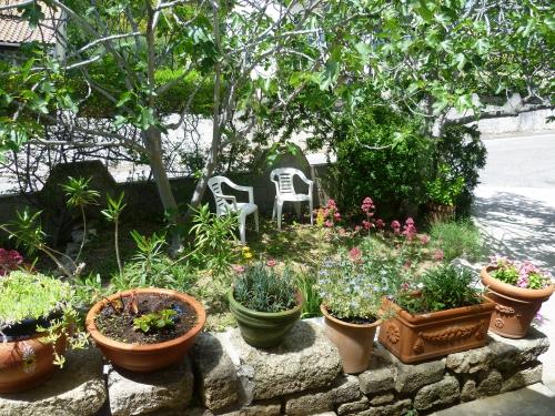 blogs,web,été,saison,fraîcheur,printemps,jardin,nature