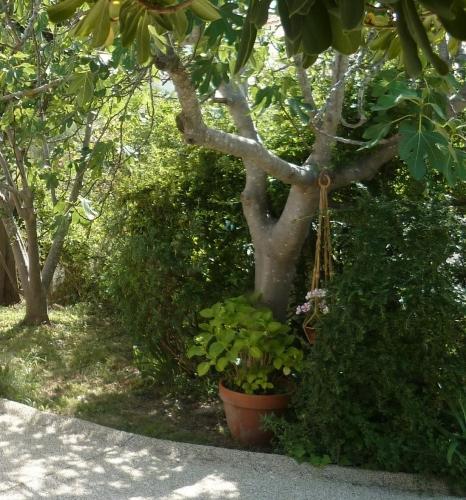 travaux,béton,portail,crépi,mur,muret de pierres,jardin,projets,pelouse