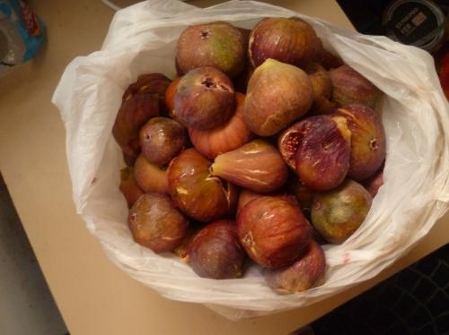 fruits,figues,figuiers,jardin,confiture,tarte,congélation
