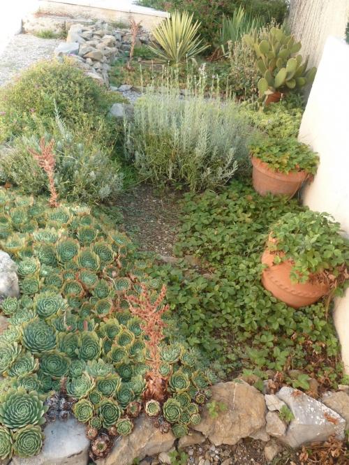 jardin,jardinage,plantes,fleurs,murets,dalles,allées,gravillons,loisirs