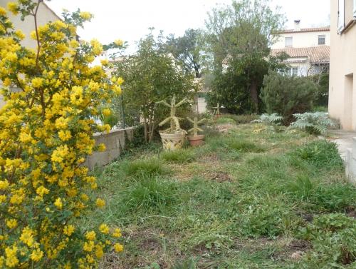 loisirs,saisons,printemps,jardin,fleurs