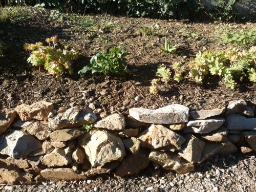 loisirs,jardinage,plantations,nature,plantes,murets,pierres