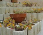 jartdin,culture,fleurs,saison,printemps,société