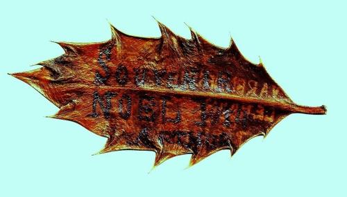1914,1918,guerre,grande guerre,souvenirs,combats,11 novembre 1918