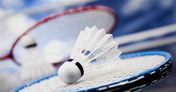 raquettes,enfance,adolescence,sport,badminton,jeu de raquettes