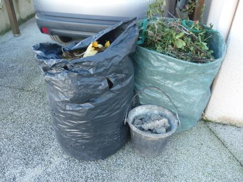 jardin,déchets,feuilles,figuier,gravats,branchages