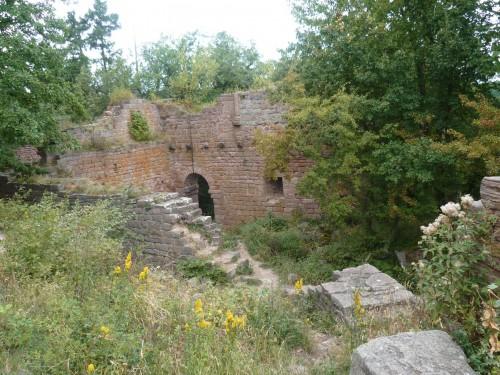 tourisme,chateau,région,alsace,voyages,culture,histoire
