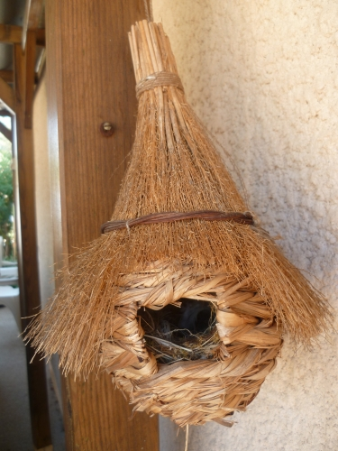 paille,nature,ficelle,nichoir,oiseau,nid,jardin,suspension