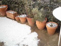 neige 11 fev 10 dim 22 (704 x 528).jpg
