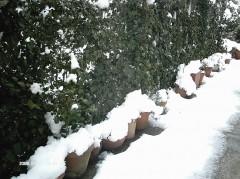 neige 08 03 10 DIM 17 (929 x 696).jpg