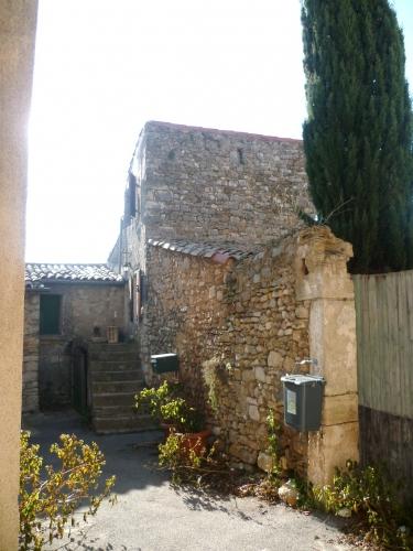P1050947 COUR MAISON EN PIERRE 19 01 17  (1224 x 1632).jpg